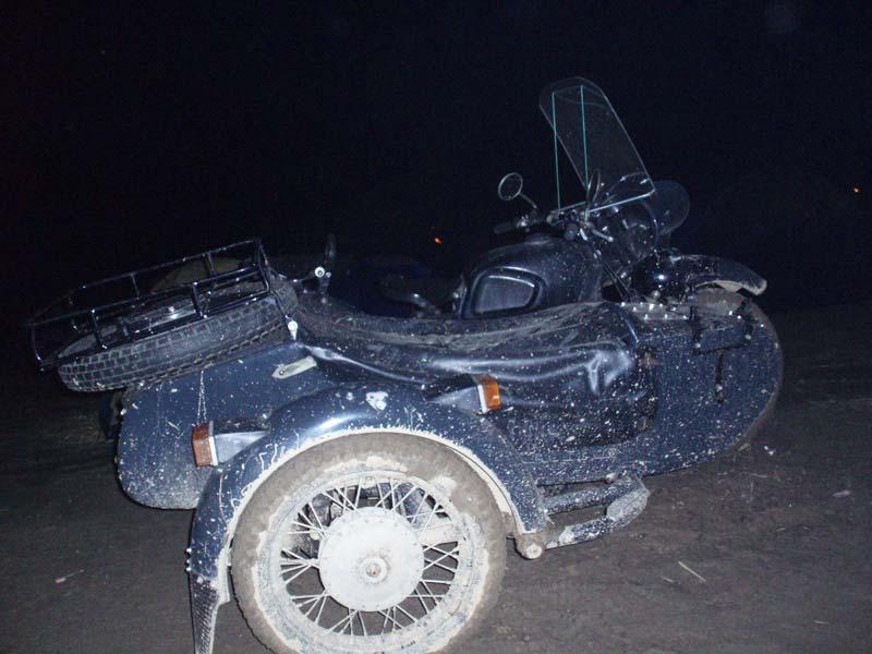 2008 Elefantentreffen im Bayrischen Wald,Jänner